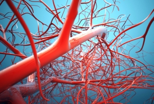bloodvessels_1